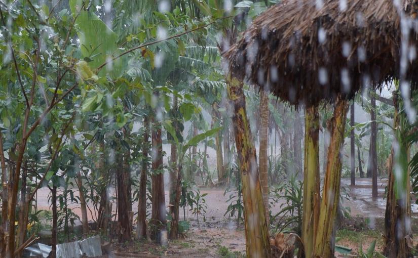The Rainy Season IsHere