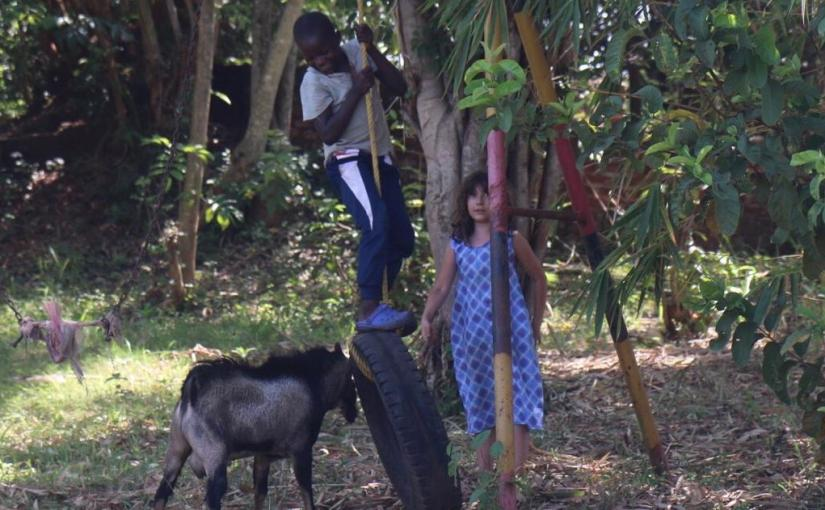 Two Kids, a Goat and a Tire Swing